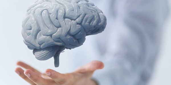 centrophenoxine brain damage